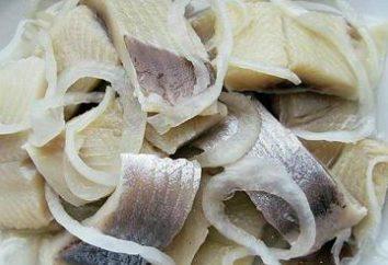 Sólo los mejores aperitivos: arenque con cebolla y vinagre recetas