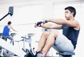 Schnelle Erholung nach dem Training: Lebensmittel, Medikamente und Empfehlungen