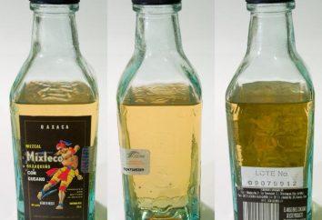 O que é mezcal? Qual é a diferença de tequila mescal?