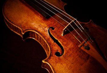 Qual é o violino? Estrutura e função da violino
