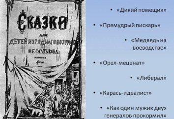 """""""Bär in der Provinz"""": Analyse von Geschichten Saltykow-Schtschedrin"""