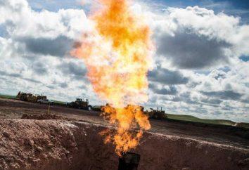 Gaz naturel: formule. gaz de formule chimique. Tous les types de gaz naturel