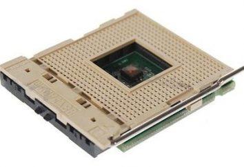 Centralny procesor – cała głowa