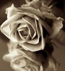Jak wyrazić kondolencje z powodu śmierci kochanej osoby