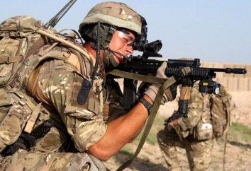 Ejército británico: los principales tipos de tropas, estructura y función
