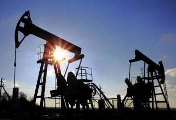 Oil and Gas Industry russo