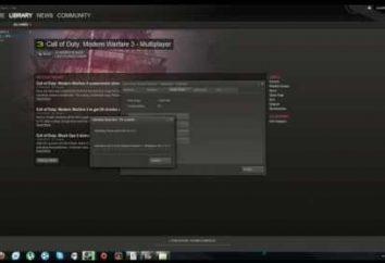 """""""Steam è al momento disponibile, riprovare più tardi"""" – come collegare"""