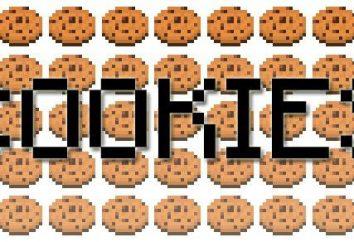 """Come fare i biscotti nella """"Maynkraft"""": dichiarazione"""