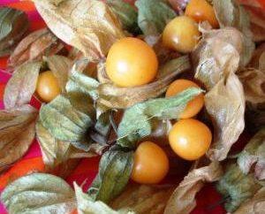 Tomatillo dans divers plats