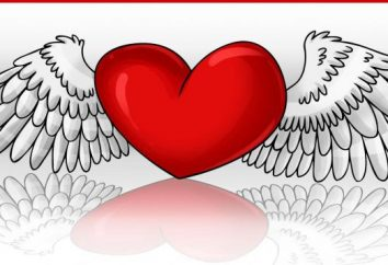 Wie ein Herz mit Flügeln ziehen: nützliche Tipps