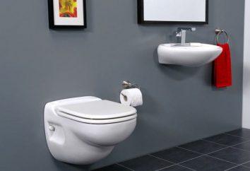 O que escolher: toalete squat ou pendurado vaso sanitário com a instalação?