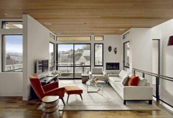 salon de design dans l'appartement: solutions élégantes