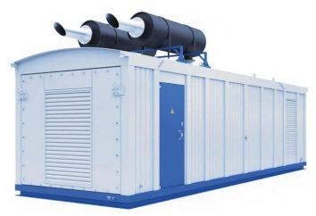 Potenza Container – Potenza in particolare mobili