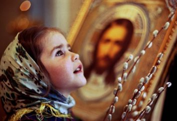 Co zrobić z wierzby po Niedzieli Palmowej, gdzie go umieścić?