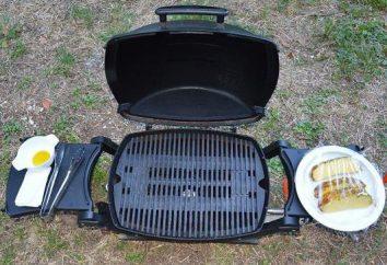 Weber Barbecue au gaz: description et avis