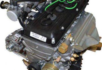 """""""Gazelle-405"""" (wtryskiwacz silnika): charakterystyka, naprawa i konserwacja"""