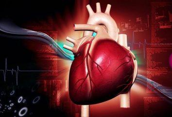 Główne leki serca