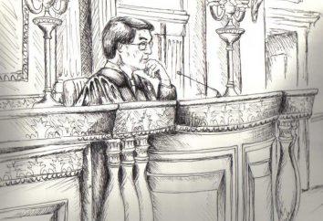 La procedura per il ricorso. I campioni di reclami in tribunale arbitrale