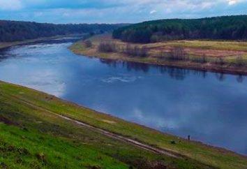 Dlaczego rzeka została nazwana rzeką? Dlaczego Wołga nazywała Wołgę?