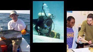 Che cosa significa ittiologo? professione ittiologo – è …