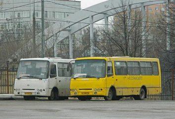 Jusqu'à combien de bus à Moscou: programme de transport terrestre