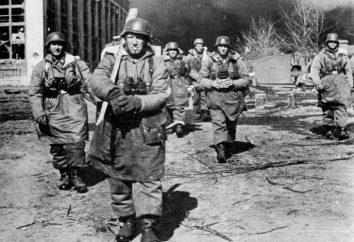 Operacja frühlingserwachen (1945). 70 operacja frühlingserwachen