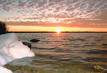 Moinakskoye lago em Yevpatoria (Crimeia): Description