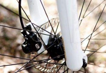 Jaką markę wybrać rower do jazdy stała się przyjemnością: Porady doświadczonych