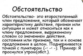 Lo que es un hecho: la palabra polisemantika