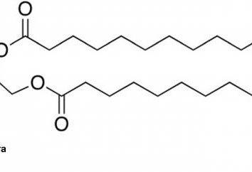 Phosphatidsäure. Synthese und Bedeutung im Körper