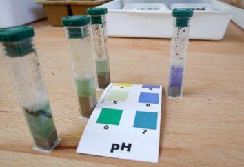 Como determinar a acidez do solo por conta própria em seu site