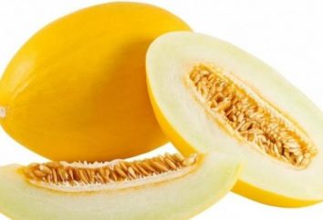 melon confites: recette de bonbons naturel