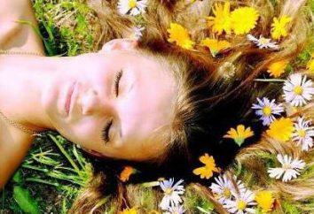 Le millepertuis pour les cheveux (huile, décoction, infusion): application, commentaires