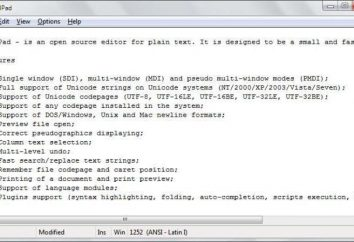 AkelPad – czym jest ten program? opis