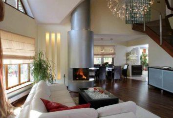 Il design del salotto con un camino in stile del minimalismo