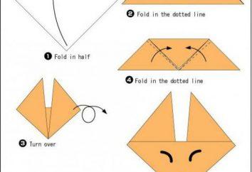 Fox Origami Master-Klasse Montage