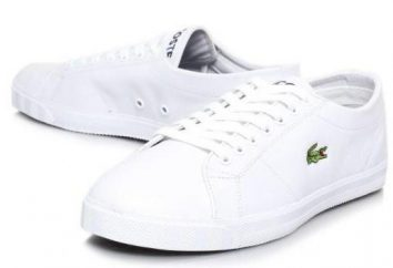 Spirit of Freedom: Lacoste Turnschuhe