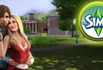"""Codici di """"The Sims 3"""" per i soldi: come diventare ricchi senza problemi?"""