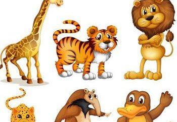 Ciekawe wspaniałe historie o dzikich zwierząt