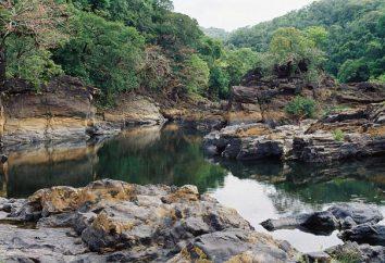 Riserve – un protetto di stato aree di natura incontaminata