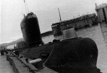 U-boat K-19: historia, przeznaczenie, zdjęcie