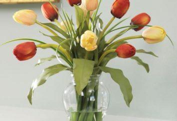 Como manter as flores mais cortar?