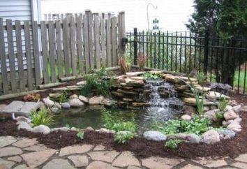 Dokonywanie strony ogrodu własnymi rękami – twórcza praca