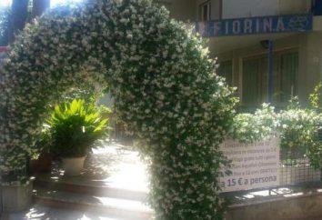 Hotel 3 * Hotel Fiorana (Rimini, Italien): Fotos und Bewertungen