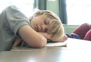Algunos consejos para los escolares: qué hacer cuando se aburre en clase