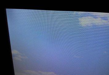 Cosa devo fare se il mio schermo piatto strisce orizzontali?