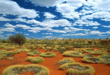 Obszar Australii. Australia na mapie. Cechy Australii