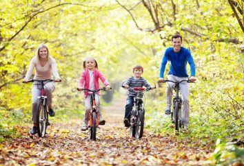 As bicicletas para crianças de 3 anos: descrição de modelos, regras de seleção
