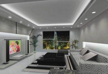 salon de design de 17 mètres carrés. m. de conseils professionnels sur la conception de l'espace