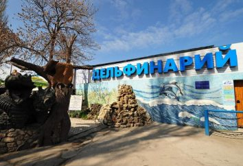 Cosa Delfinario a Sebastopoli? Impariamo!